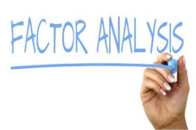 Factor Analysis Results