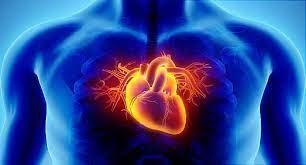 Preventing Heart Disease in Women