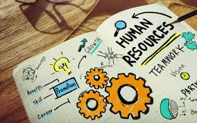 Human Resource Management in Health and Social Care