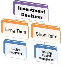 Investment Decisions in Economics and Finance