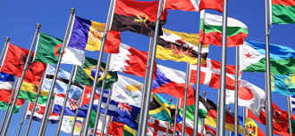 The Liability of Foreignness Concept