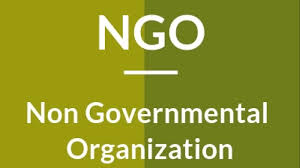 The Role of Non-Government Organizations