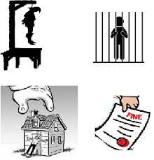 Punishment in the Criminal Justice System