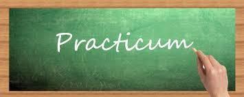 Practicum Journal Entry