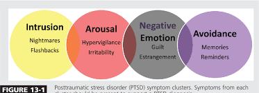 PTSD Symptom Cluster