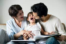 Systemic Analysis of the Family